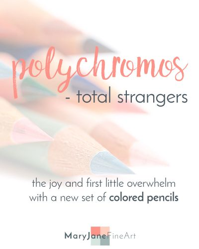 Polychromos by Faber-Castell the joy and overwhelm of buying a new set of colored pencils