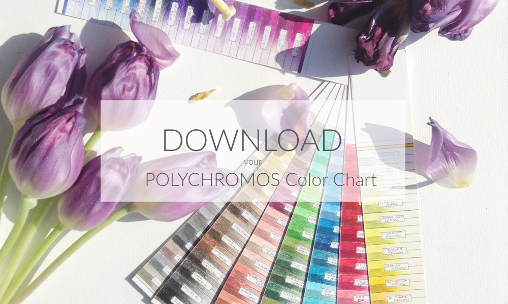 Polychromos – Color Chart
