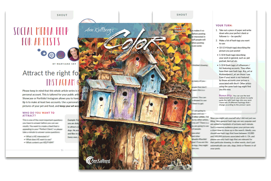 Social media for artists article by maryjane fine art for the color magazine by ann kullberg